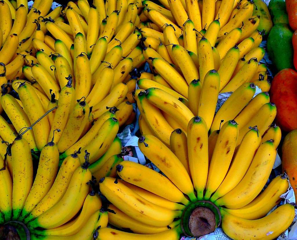 regime banane 4 jours